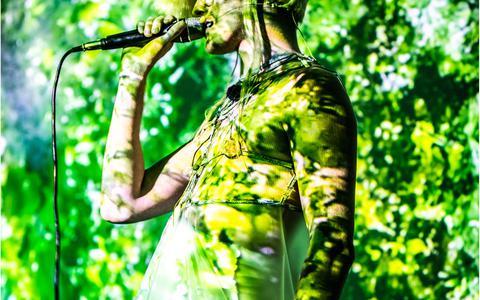 'Enter the Forest' van Jasper Griepink.