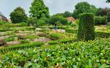 De tuinen van Marxveld met de vele verdorde en door de buxusmot aangevreten buxushagen.